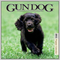 2011 GUN DOG PUPPY CALENDAR