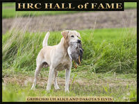 HRC Hall of Fame Dogs