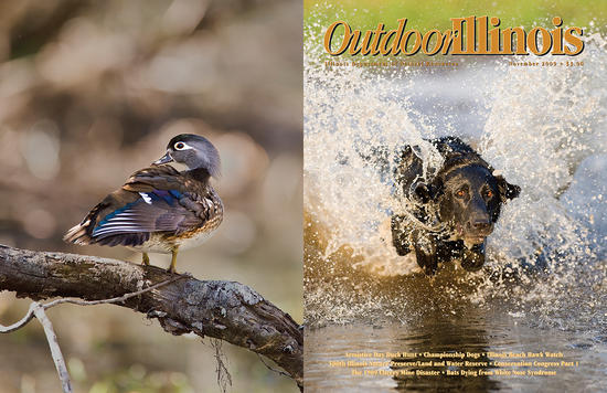 Outdoor Illinois Magazine