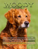Full page; Golden Retriever News
