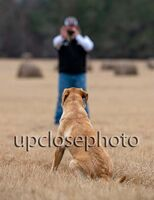 TFKpurina_Virginia_039_121720_w